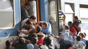 Refugees Train